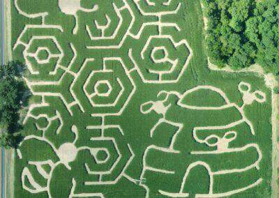 2020 Corn Maze Picture